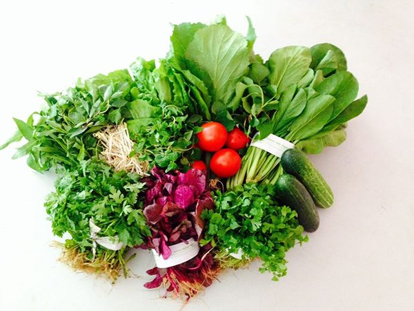 Lựa chọn rau sạch như thế nào