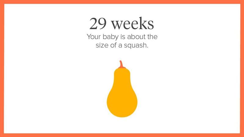 một số đặc điểm của thai nhi 29 tuần mẹ bầu không nên bỏ qua