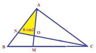 công thức tính diện tích hình tam giác, chu vi hình tam giác