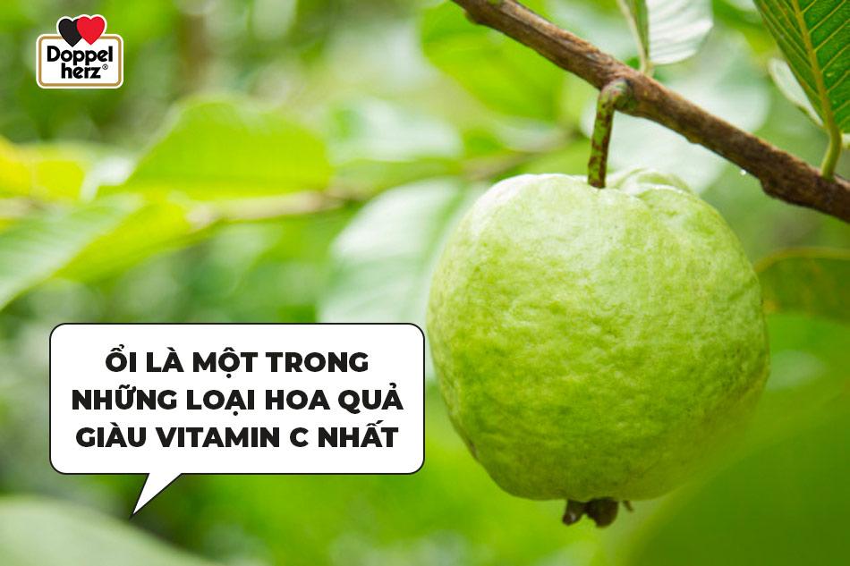 mách nhỏ: trái cây tốt cho bà bầu 3 tháng đầu mang thai - doppelherz việt nam
