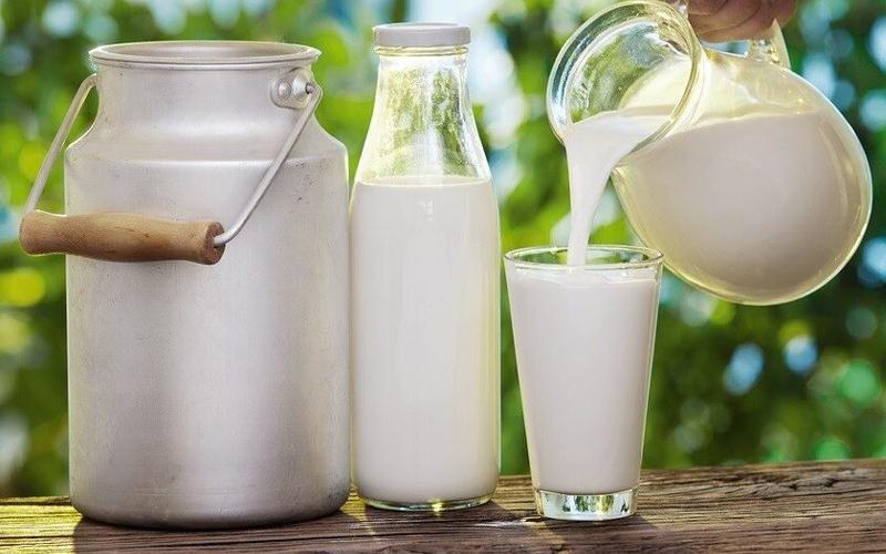 sữa tươi nguyên kem là gì? sữa nguyên kem loại nào tốt?