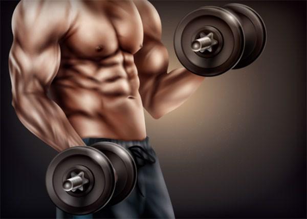 top 13 loại sữa tăng cân tăng cơ tốt nhất cho người gầy tập gym