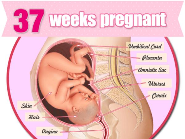thai 37 tuần nặng bao nhiêu kg và những điều mẹ bầu cần đặc biệt chú ý