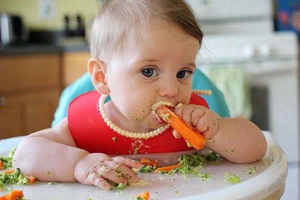 trẻ 7 tháng ăn được gì? thực đơn ăn dặm cho trẻ 7 tháng
